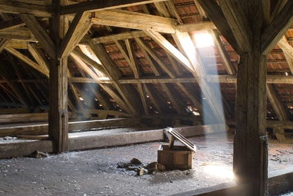 Damp or rot in roof timbers