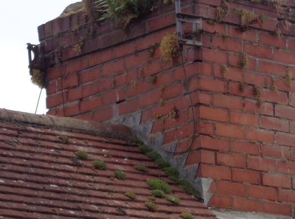 Dealing With Moss On A Roof Great Home