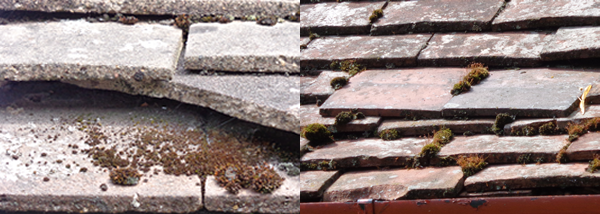 Slipped broken tiles slates - replacing roof tiles