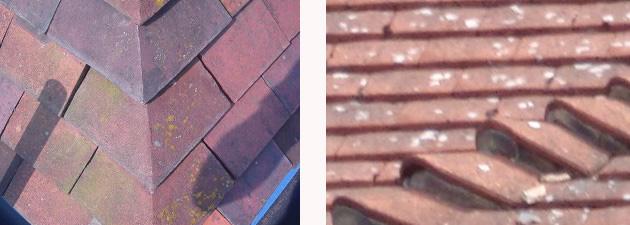 Hip Tiles Arris Hip Tile and Bonnet Hip Tile